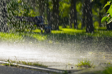 Drops of warm summer rain, falling on the asphalt