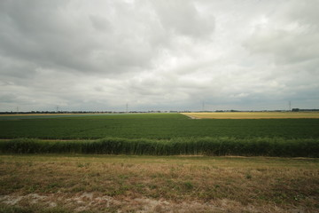 Fields and farms in the Zuidplaspolder in Moordrecht in the Netherlands.