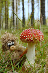 Hob under the fly-agaric / Wood spirit is standing under the fly-agaric mushroom (Amanita muscaria lat.), Puumala, Finland