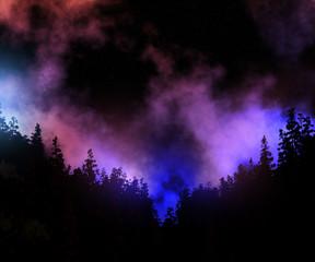 3d pine tree landscape against a space sky
