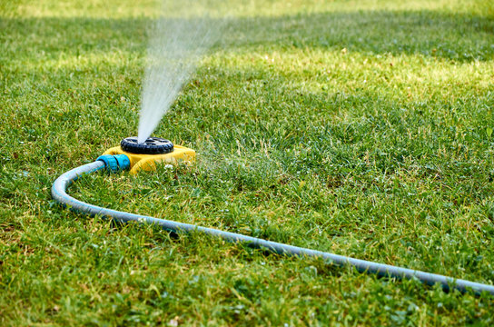 Automatic watering system for lawn and flowers in the city park