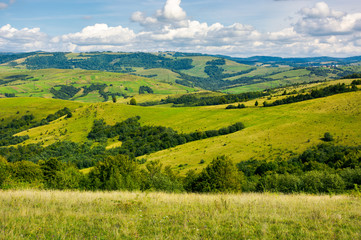 grassy meadows and forested hill. lovely countryside in autumn