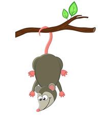 Cute cartoon opossuml. Vector illustration. Smiling opossum.
