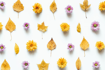 Autumn Pattern With Flowers And Dry Leaves On White Background