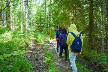 A group of friends hiking together in Oravivuori in Finland.