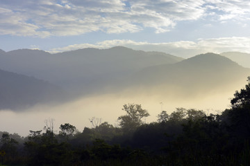 The forest and the hills with morning mist