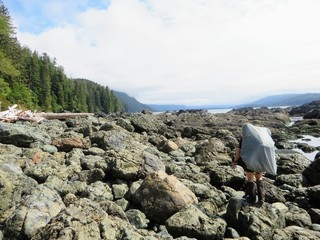 Epic Hike along the West Coast Trail, Vancouver Island, Canada