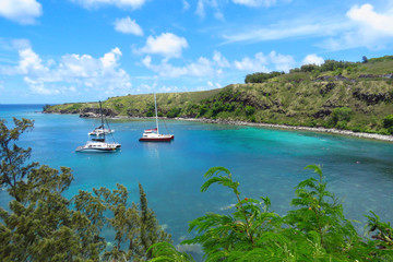 Amazing view over Honolua Bay where sail boats are moored and tourists snorkel to discover the colourful underwater world with exotic fish and green Hawaiian sea turtles (honu), Maui, Hawaii