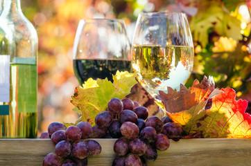 Erntezeit, Genuss in der Pfalz: Weinprobe im Herbst, Rotwein, Weißwein, Weinglas und Trauben im Weinberg :) Wall mural