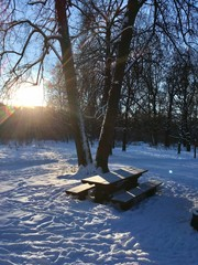 Keuken foto achterwand Noordzee Winter in Izmailovsky park