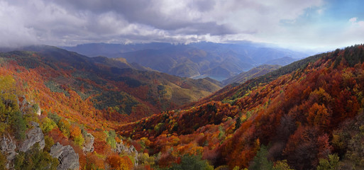 Autumn forest mountain - panoramic view