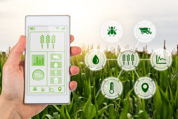 Agritech concept smartphone app with graphic display agricultural icons