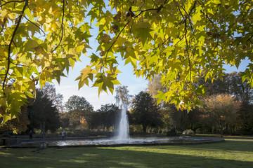 Goldener Oktober im Stadtgarten in Bottrop