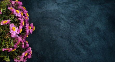 Wide Angle flower background