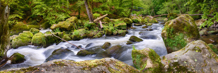 Panorama shot of streaming river in woods