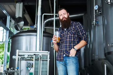 portrait of man with craft beer from brewery