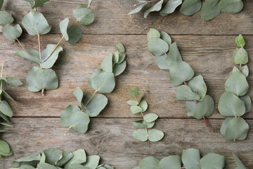Flat lay composition with fresh eucalyptus leaves on wooden background
