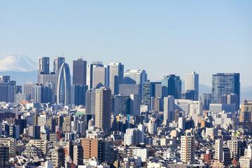 高層ビルから望む東京都市景観