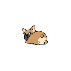 Cute french bulldog lying down and looking back, vector illustration