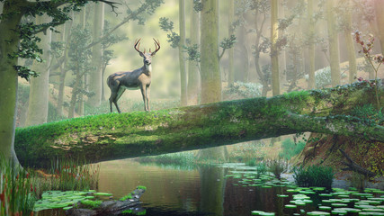 deer standing on fallen tree bridge in beautiful foggy landscape
