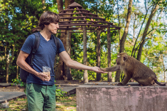 The man feeds the monkey whith nuts
