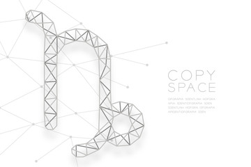 Capricorn Zodiac sign wireframe Polygon silver frame structure, Fortune teller concept design illustration isolated on white background with copy space, vector eps 10