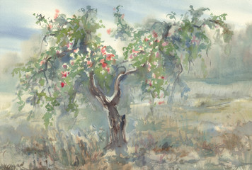Apple tree with fruits watercolor background. Autumn landscape