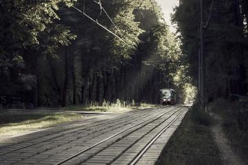 tram/трамвай