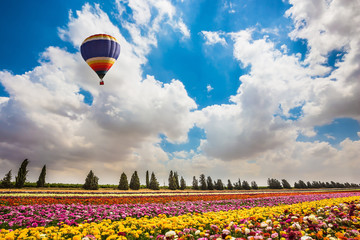 Huge balloon flying over flowers