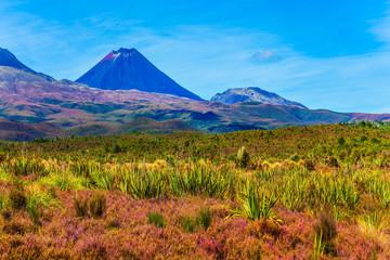 Ngauruhoe - the active volcano