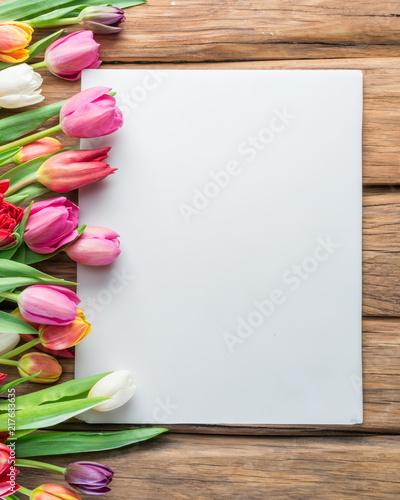 Tulip frame. Spring background.