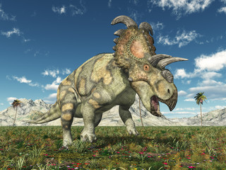 Dinosaurier Albertaceratops