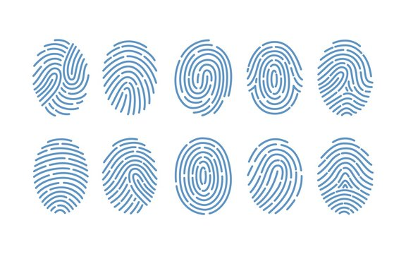 Set of fingerprints of various types isolated on white background. Traces of friction ridges of human fingers. Method of forensic science, person's identification. Monochrome vector illustration.