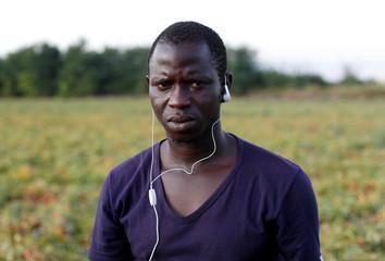 Idrissa Diassy, 24, from Senegal is pictured in a field of tomato plants, near Foggia