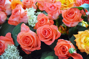 Beautiful bouquet of peach roses