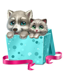 puppy of a husky and gray kitten sitting in a gift box, isolated on a white background