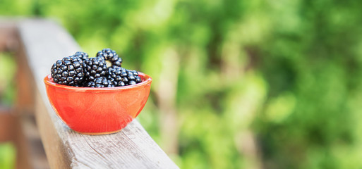 Ceramic bowl with ripe blackberries on a green nature background. Free space