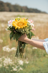 cropped shot of woman holding bouquet of wild flowers in field