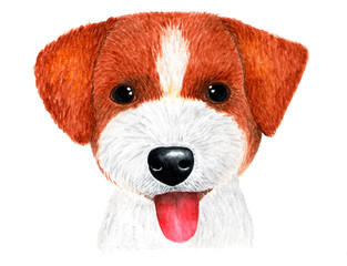 Puppy Jack Russell Terrier. Watercolor illustration.
