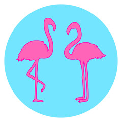 Flamingo. Cartoon birds. Bright colors. Print for polygraphy, t-shirts and textiles. Web icon