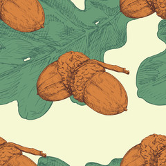 Acorn and oak leaf. Vector seamless pattern. Hand drawn illustration. Color illustration