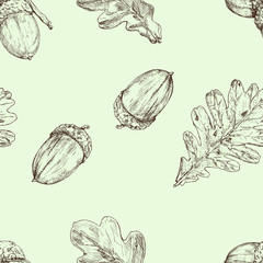 Acorn and oak leaf. Vector seamless pattern. Hand drawn illustration. Autumn background
