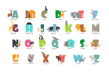 Cartoon wild animals kids alphabet for children studying english. Education vector background