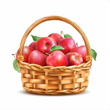 Basket with red apples isolated on white. Vector illustration.