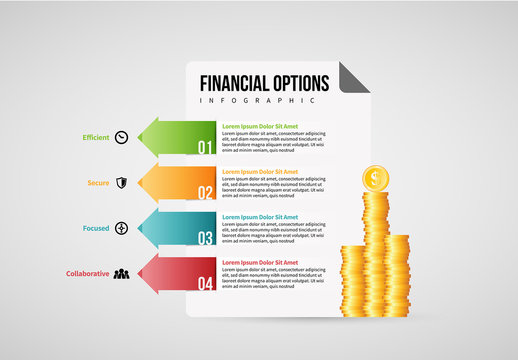 Financial Options Infographic Layout