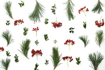 Christmas holidays botanical background