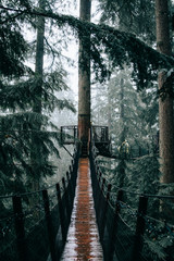 Footbridge and lookout