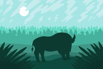 Fototapeta Landscape with wild bizon on field
