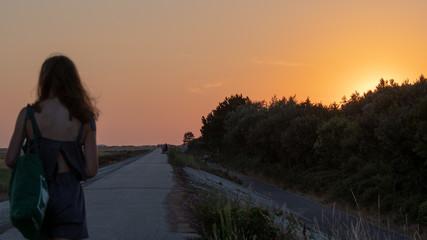 Sonnenuntergang am Deich von SPO