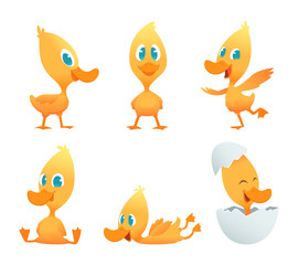Cartoon duck. Various action poses of funny duck